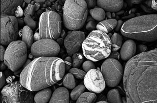 Pebbles by Bronwen Griffiths